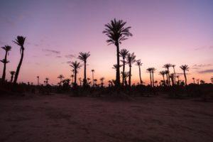 Escursioni in giornata da Marrakech